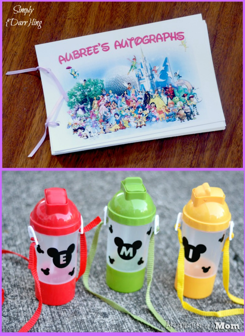 Disney Park Crafts