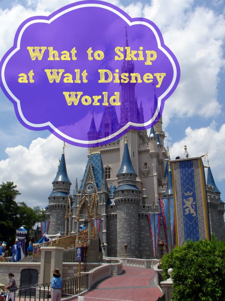 Disney World has a lot to do so it's important that you know what to skip if you need to save time.