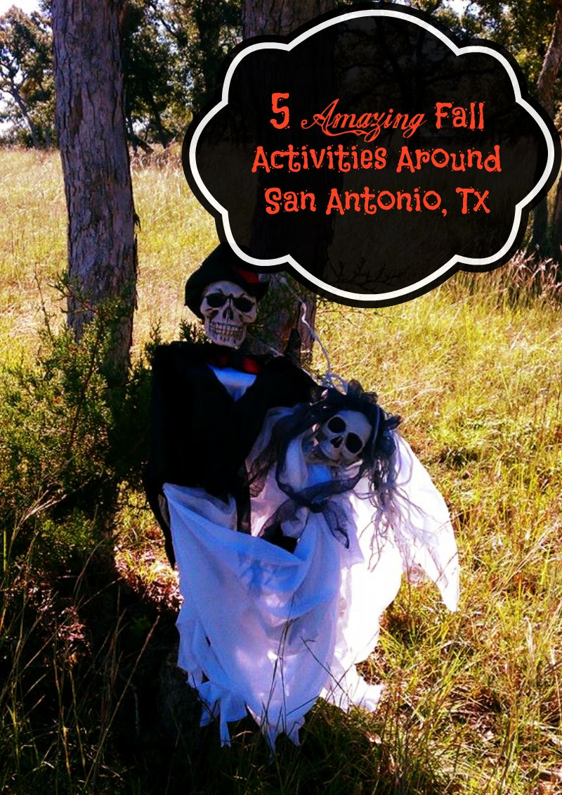 5 Amazing Fall Activities Around San Antonio