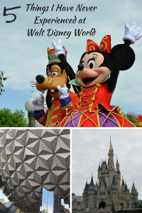 5 Things I Have Never Experienced At Walt Disney World