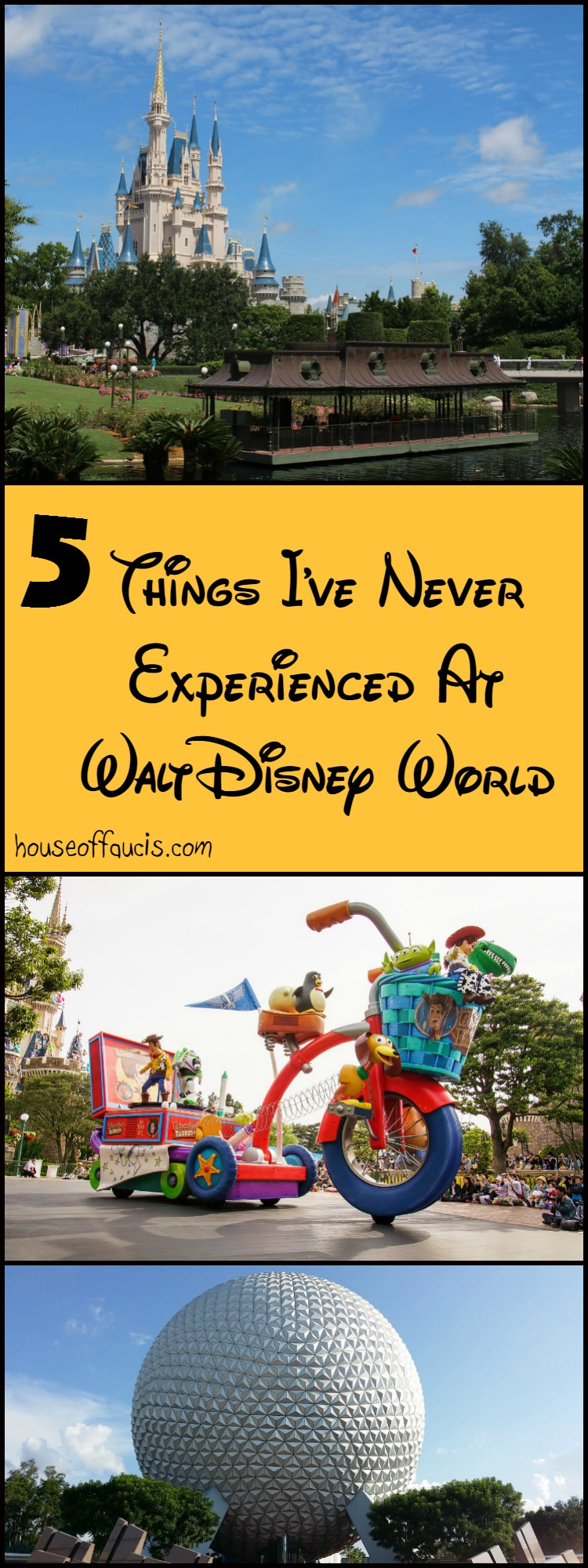 5 Things I've Never Experienced At Walt Disney World