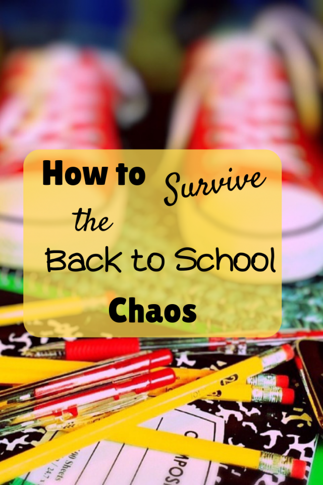"Over the years I have learned different ways to survive the back to school morning chaos, so if you are an ""On-the-Go Mom""  like me, I'd love to share with you some ways that I survive each morning, along with an after school recipe."