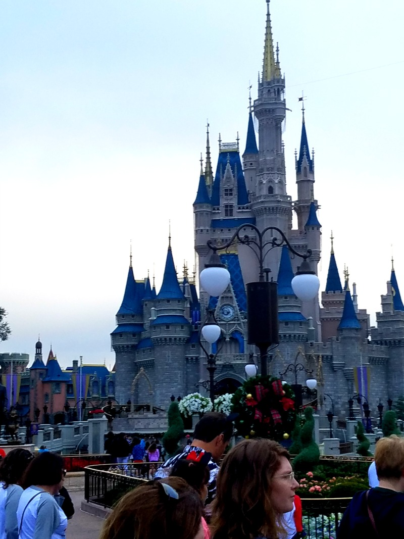 My family has always loved Disney but lately there are a few reasons why I could see myself never going again.