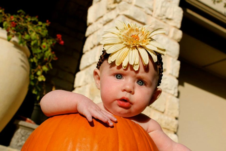 I am sure you have seen those cute pictures of a baby in a pumpkin. Here is how you can recreate those baby in a pumpkin pictures.