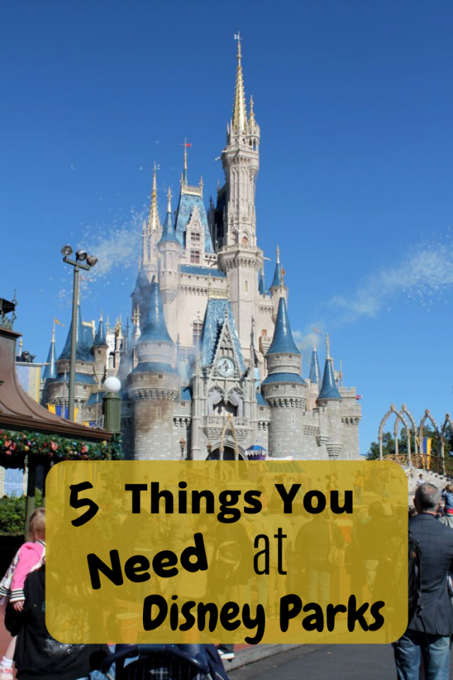 Before you go to Disney with your family, you will want to make sure that you bring these 5 things to help you survive each day.
